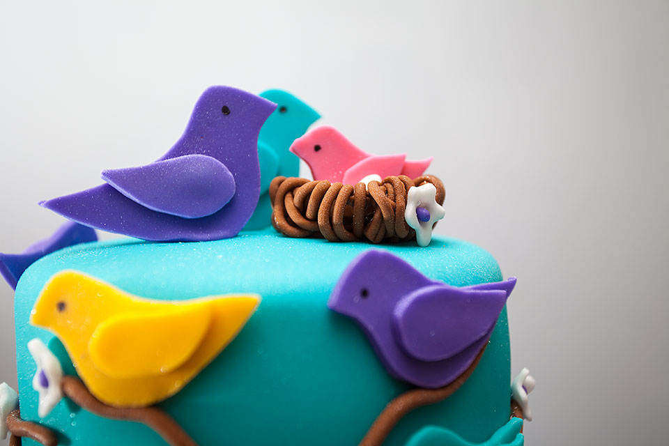 Baby Birds Theme Baby Shower Fondant Cakes in the Upper East Side, Manhattan NY